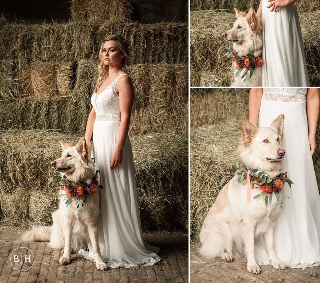 Tribal wedding Bride with Dog taken by Becky Harley Photography