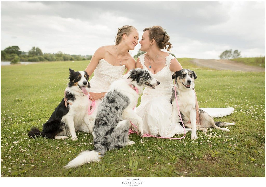 best wedding photos june 2018