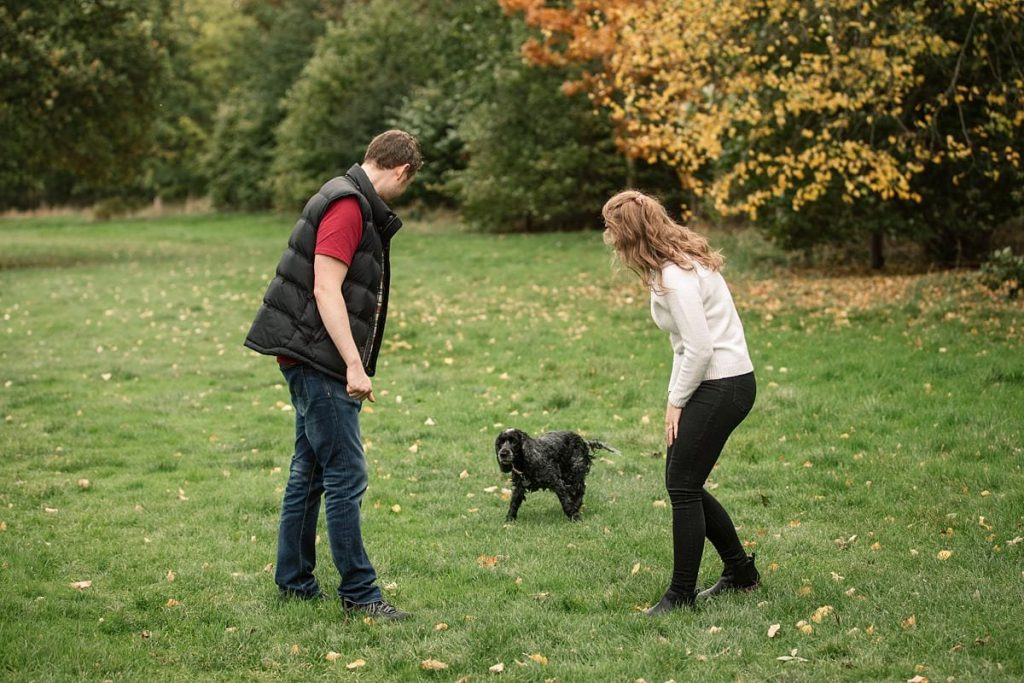 Couple playing with black dog in Hatfield House grounds taken by Becky Harley Photography